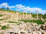 Amathus, Apollonův chrám