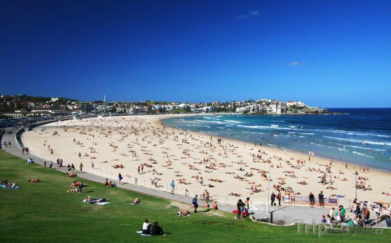 Fotka, Foto Bondi Beach (Sydney, Austrálie)