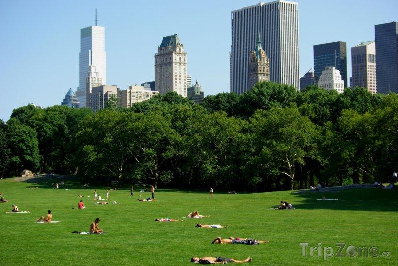 Fotka, Foto Central Park (New York, USA)