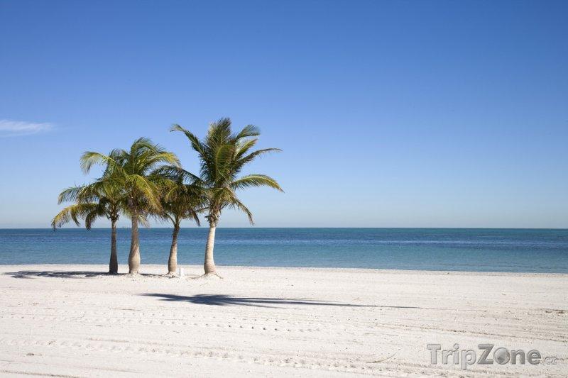 Fotka, Foto Key Biscayne, pláž (Florida, USA)