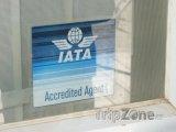 Logo IATA agentur