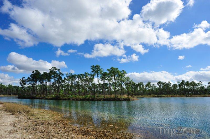 Fotka, Foto Národní park Everglades (Florida, USA)