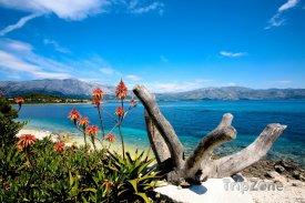 Ostrov Korčula