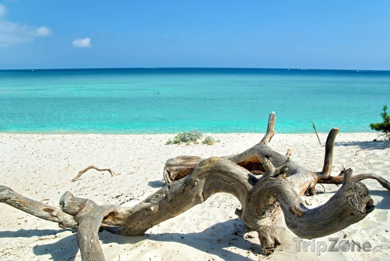 Fotka, Foto Pláž na Korsice (Korsika, Francie)