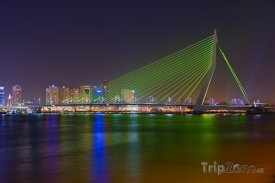 Rotterdam, most Erasmusbrug