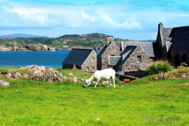 Fotka, Foto Skotsko, krajina ostrova Iona (Velká Británie)