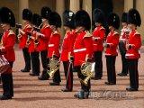 Stráže u Buckinghamského paláce