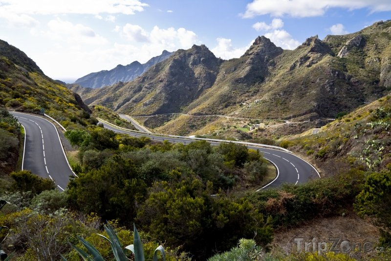 Fotka, Foto Tenerife, silnice vedoucí na Pico del Teide (Kanárské ostrovy, Španělsko)