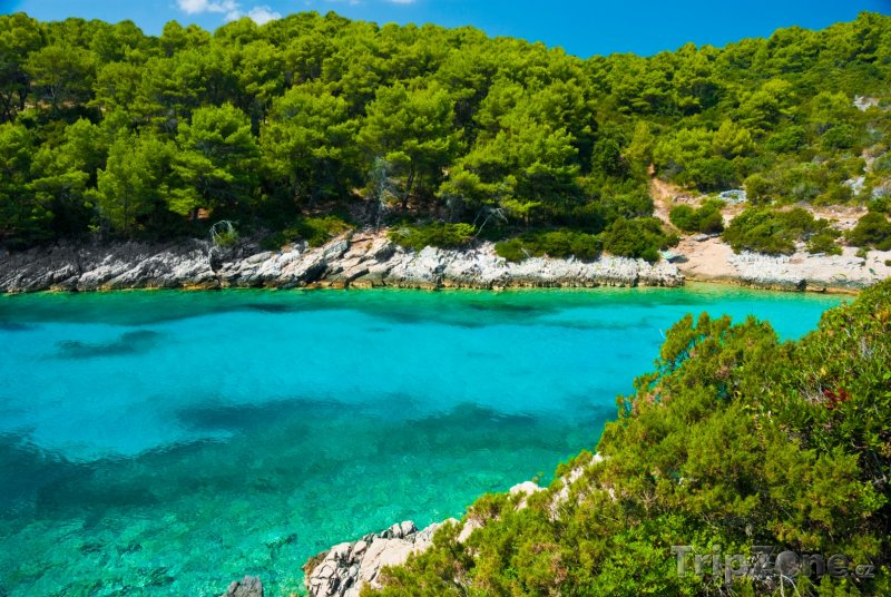 Fotka, Foto Záliv na ostrově Korčula (Chorvatsko)