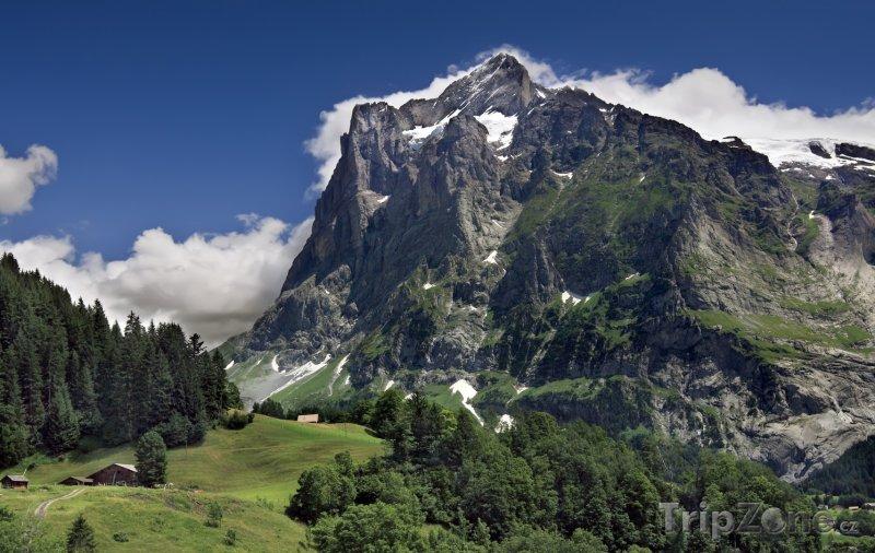 Fotka, Foto Alpské pahorky u obce Grindelwald (Švýcarsko)