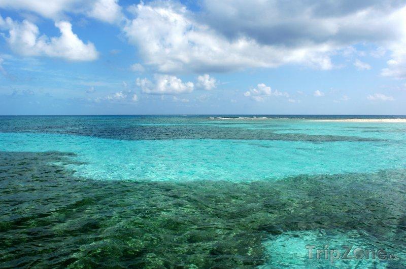 Fotka, Foto Bariéra Belize - druhý největší korálový útes na světě (Belize)