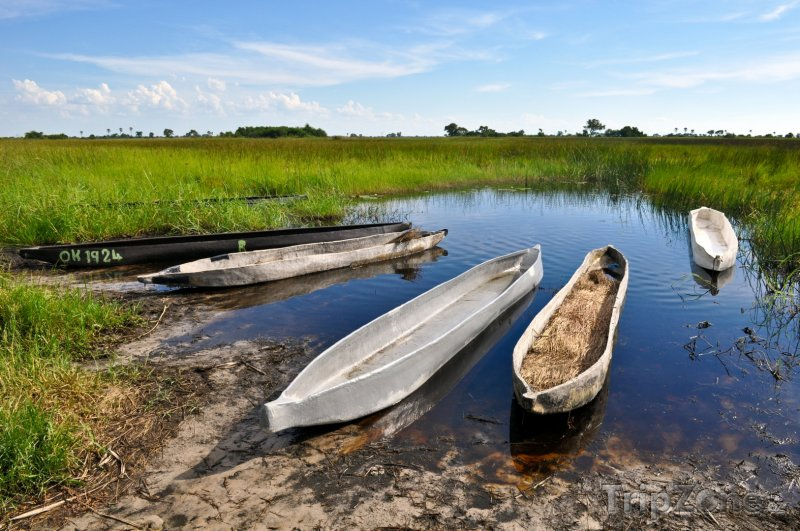 Fotka, Foto Delta řeky Okavango v poušti Kalahari (Botswana)
