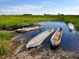 Delta řeky Okavango v poušti Kalahari