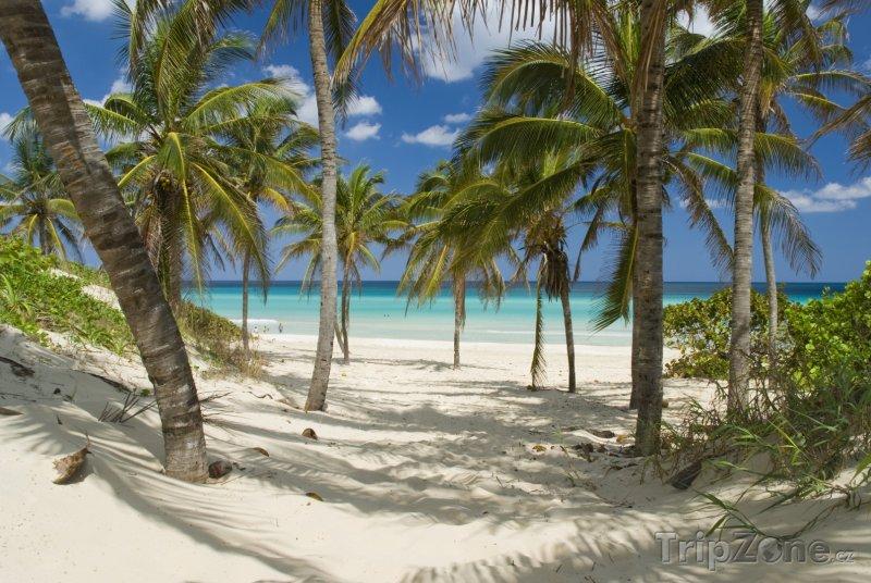 Fotka, Foto Guanabo, pohádková pláž (Kuba)