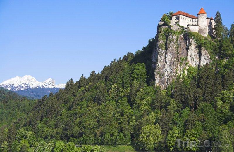 Fotka, Foto Hrad v Bledu (Slovinsko)
