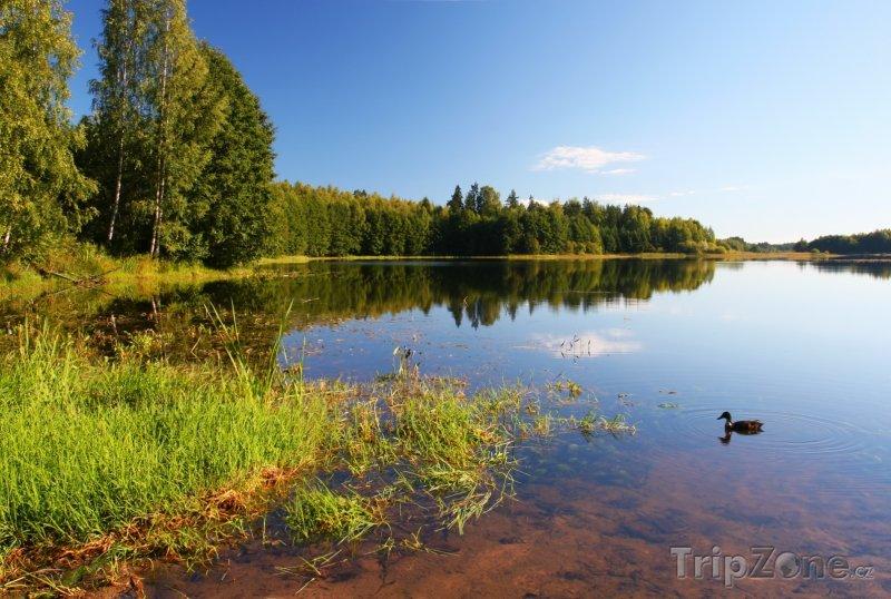 Fotka, Foto Jezero Soodla v létě (Estonsko)