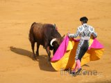 Korida v Seville - souboj toreadora s býkem