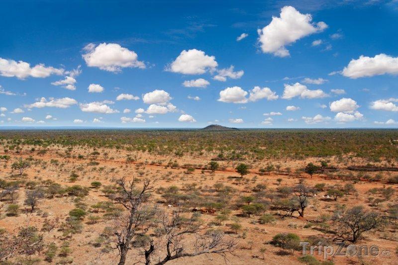 Fotka, Foto Krajina národního parku Chobe (Botswana)