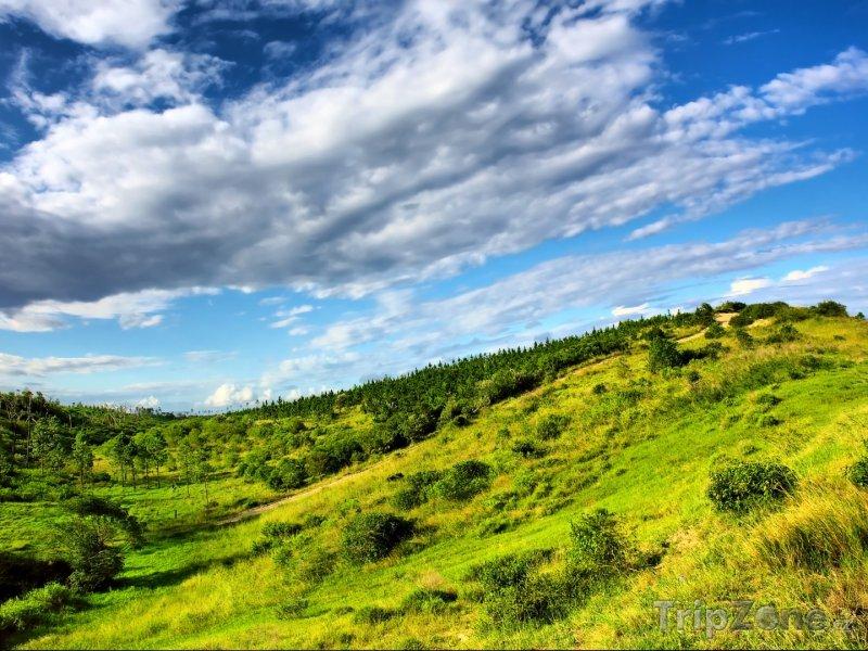 Fotka, Foto Krajina národního parku Sodwana Bay (Jihoafrická republika)