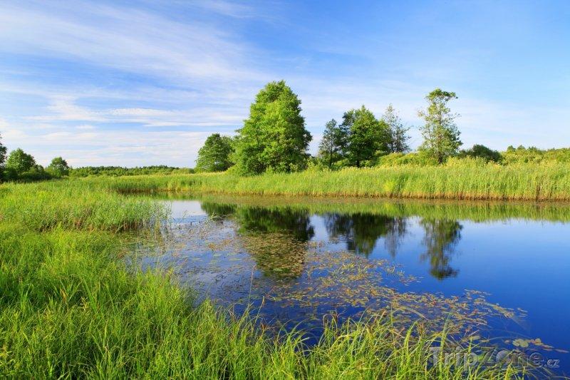 Fotka, Foto Krajina podél řeky Bereziny (Bělorusko)