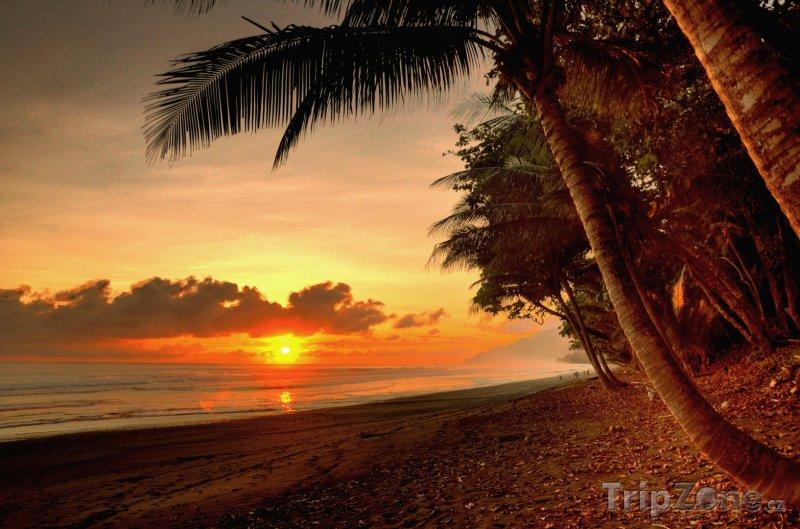 Fotka, Foto Národní park Corcovado, pláž (Kostarika)