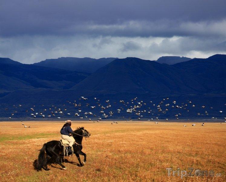 Fotka, Foto Patagonie, gaucho se řítí krajinou (Argentina)