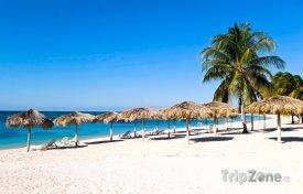 Písčitá pláž se slunečníky