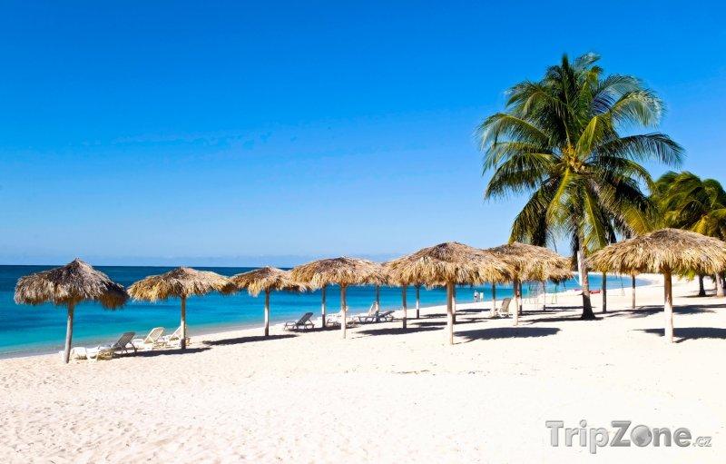 Fotka, Foto Písčitá pláž se slunečníky (Kuba)