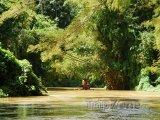 Plavba po řece Martha Brae