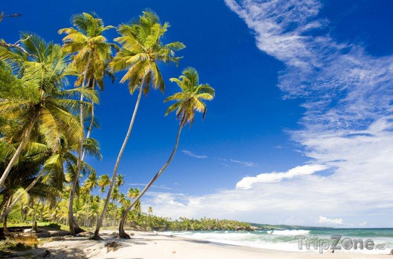 Fotka, Foto Pláž Cumuna (Trinidad a Tobago)