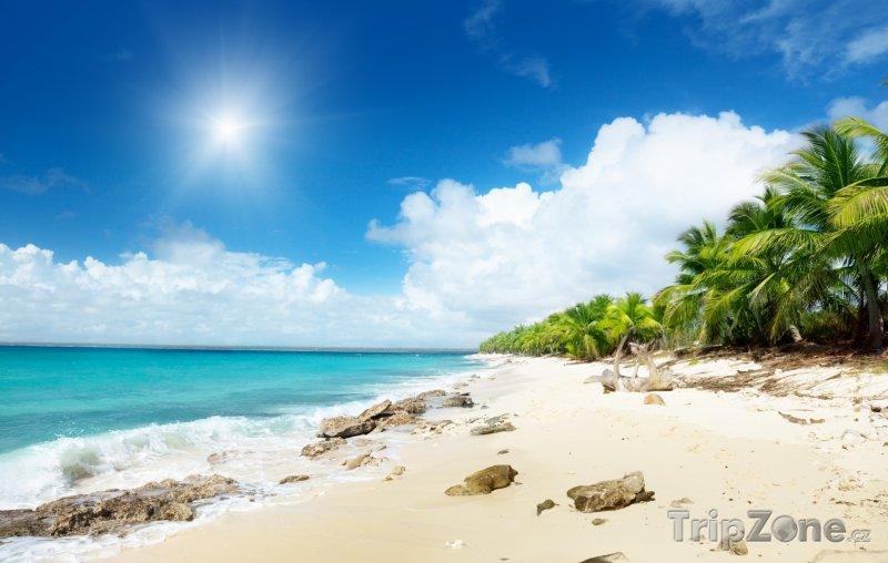 Fotka, Foto Pláž na ostrově Catalina (Dominikánská republika)
