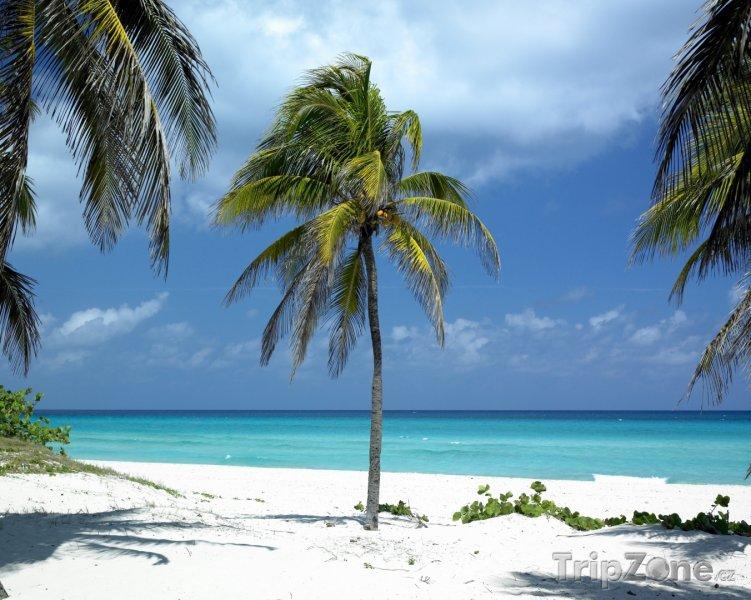 Fotka, Foto Plážička u Veradera v provincii Matanzas (Kuba)