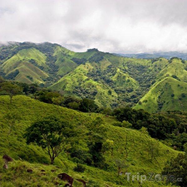 Fotka, Foto Příroda u Monteverde (Kostarika)