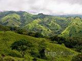 Příroda u Monteverde