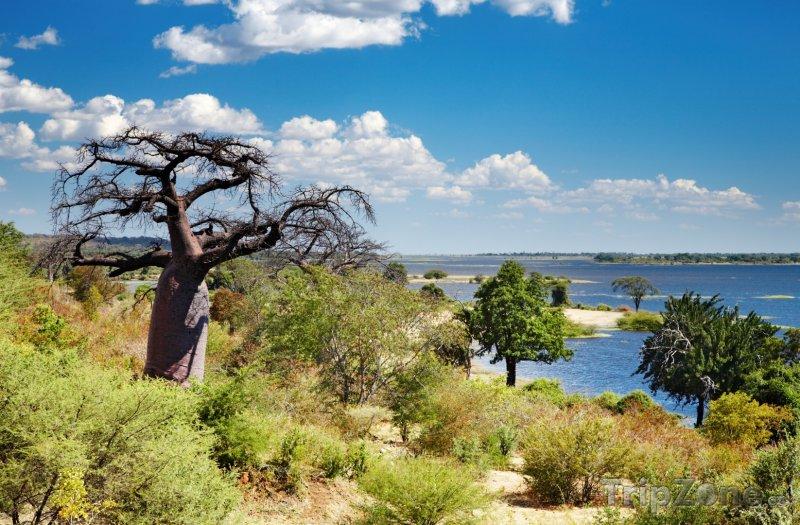 Fotka, Foto Řeka Kwando v oblasti Ngamiland (Botswana)