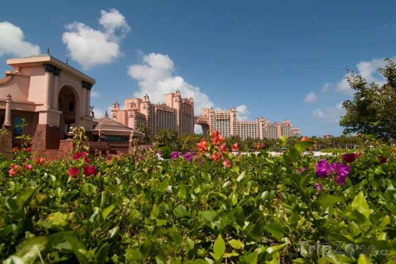 Fotka, Foto Resort Atlantis Royal Towers, zahrada (Bahamy)