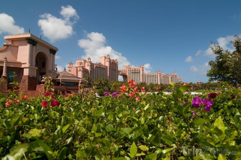 Fotka, Foto Resort Atlantis Royal Towers, zahrada (Bahamy)