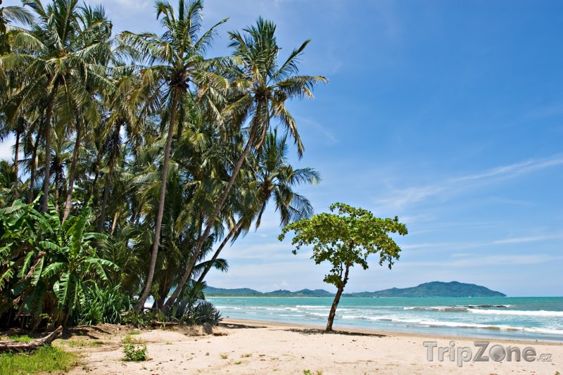 Fotka, Foto Romantická pláž (Kostarika)