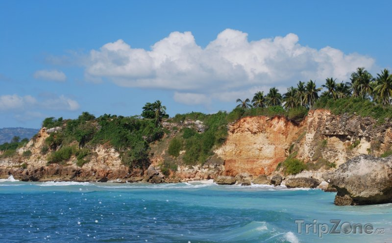 Fotka, Foto Skalní pobřeží s palmami (Haiti)