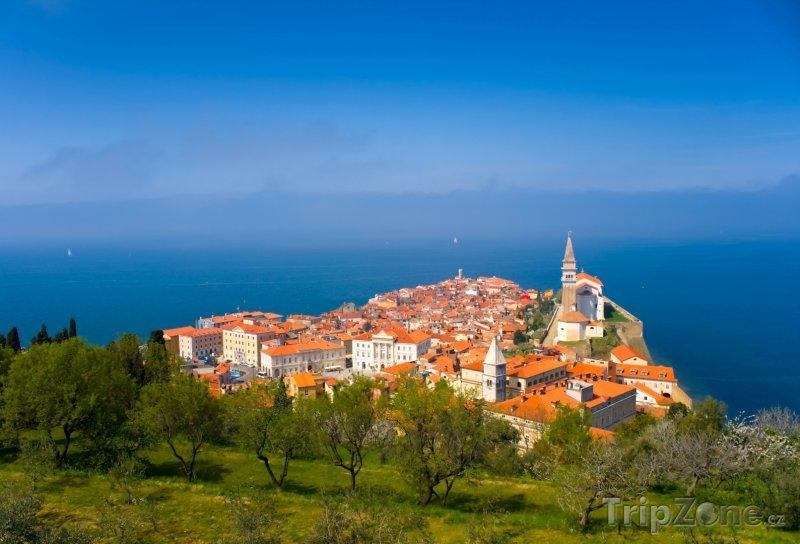 Fotka, Foto Starobylé městečko Piran na břehu Jadranu (Slovinsko)