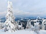 Zasněžené Karpaty