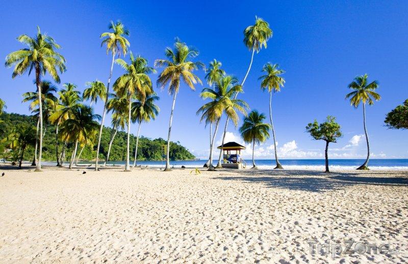 Fotka, Foto Zátoka Maracas (Trinidad a Tobago)