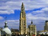 Antverpy, katedrála