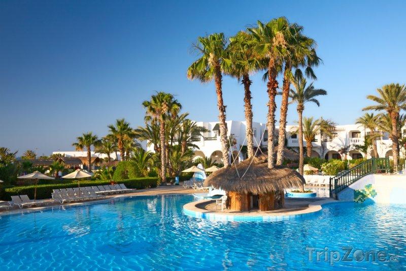 Fotka, Foto Bazén s palmami (Tunisko)