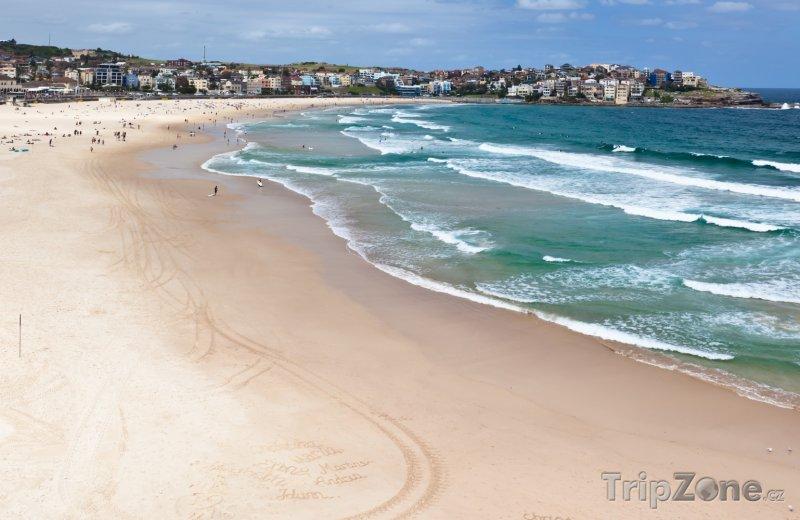 Fotka, Foto Bondi Beach na předměstí Sydney (Sydney, Austrálie)