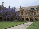 Budova University of Sydney