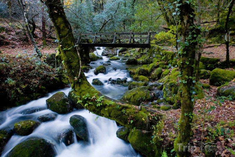 Fotka, Foto Bystřina v Národním parku Peneda-Gerês (Portugalsko)