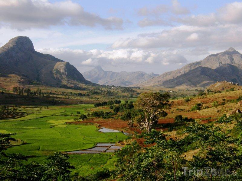 Fotka, Foto Dechberoucí pohled do přírody (Madagaskar)