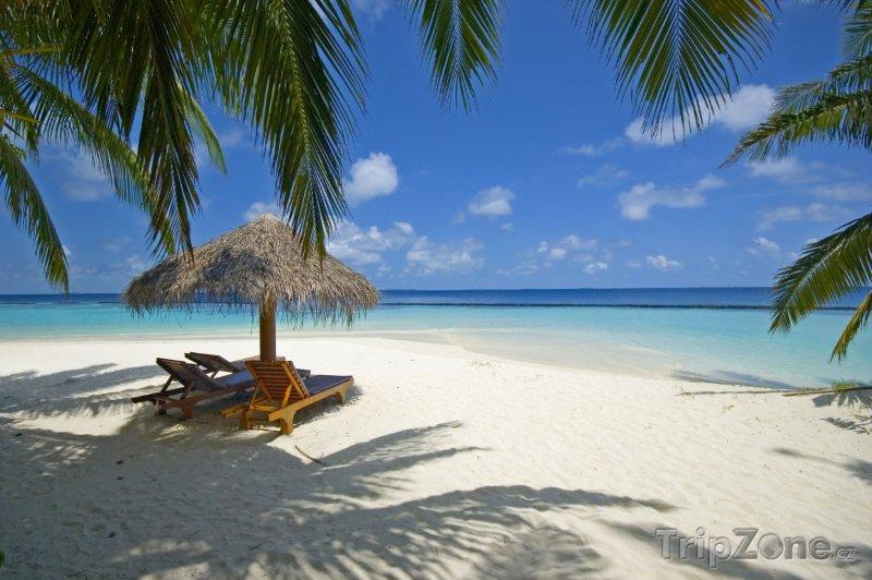 Fotka, Foto Exotická pláž s lehátky (Maledivy)