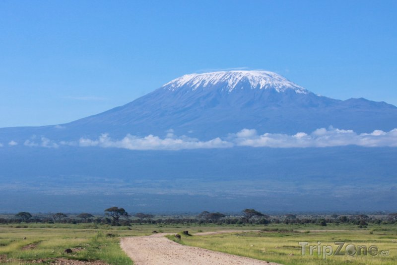 Fotka, Foto Kilimandžáro - nejvyšší hora Afriky (Tanzanie)